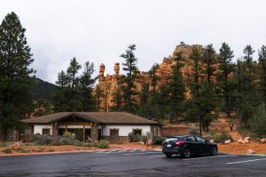 Dixie National Forest, 2013