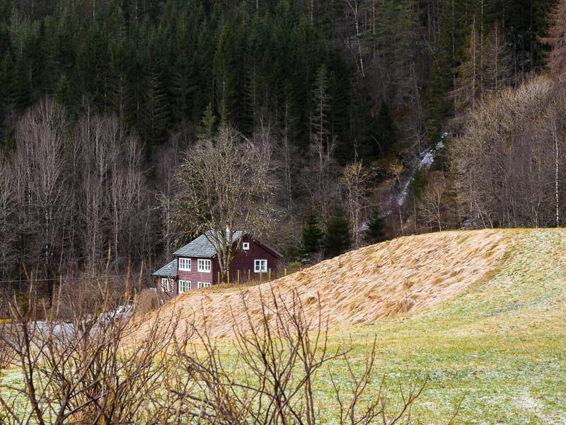 Bolstadøyri, 2017